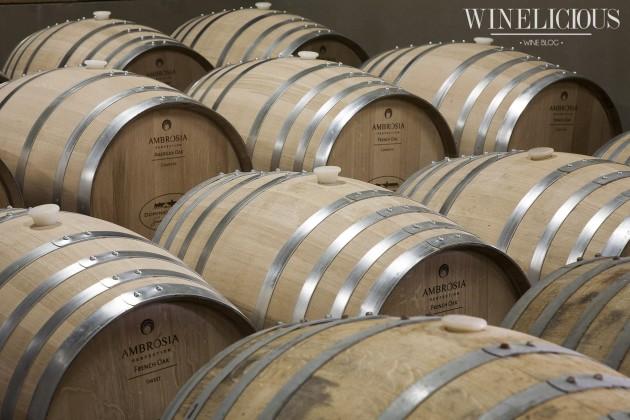 Apresentação vinícola (1)