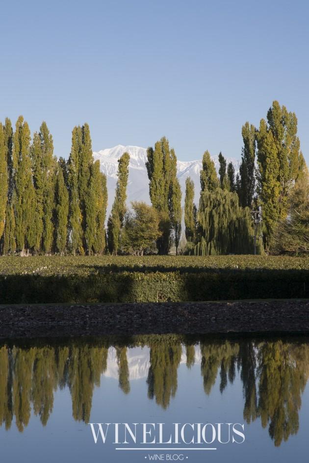 Garden at Dominio del Plata winery, Mendoza, Argentina