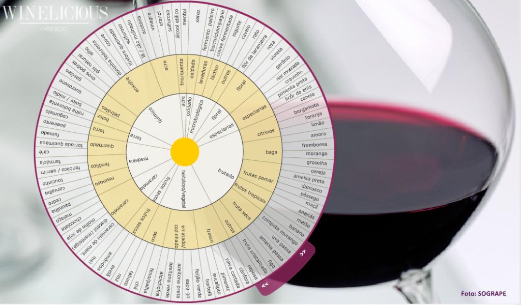 A roda dos aromas é um instrumento que auxilia na classificação dos aromas do vinho. Composta por três círculos, a sua leitura parte do centro para a extremidade. Os aromas estão agrupados nestes círculos e fazem uma progressão dos aromas mais genéricos para os mais específicos. Assim, nos dois círculos internos encontramos os aromas mais genéricos e no círculo exterior os aromas mais específicos.