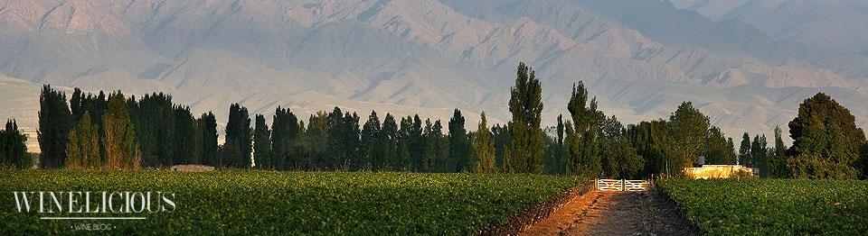 La Consulta - San Carlos, Mendoza (Valle de Uco)